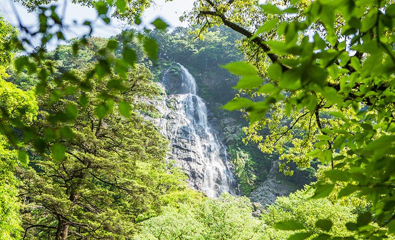 大杉谷 千尋滝 滝