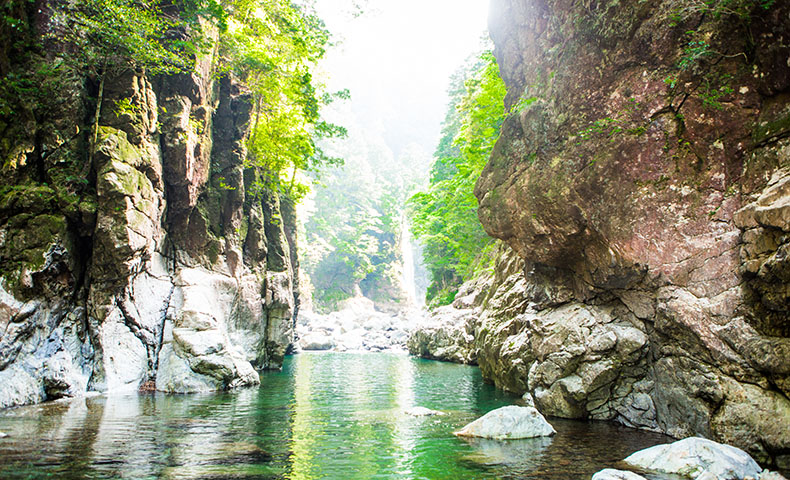 大杉谷 シシ淵 ニコニコ滝