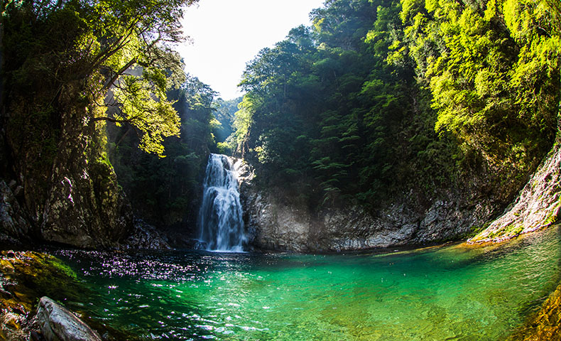 大杉谷 滝 堂倉滝