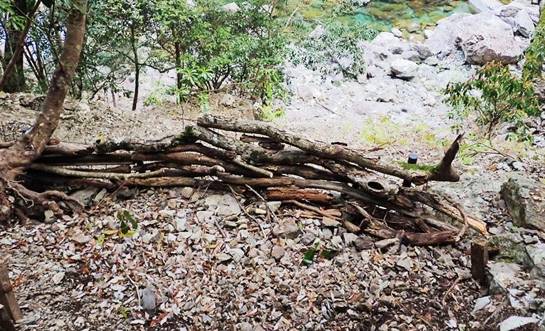 大杉谷 登山道整備