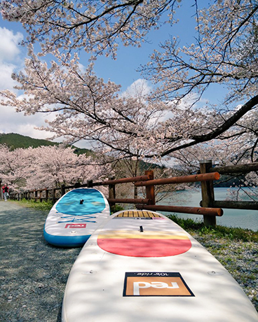花見SUP 宮川